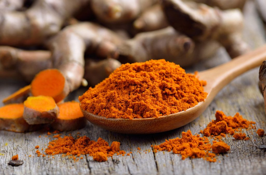 Turmeric for pets?  What is it and what does it do?